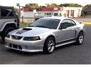 LOOKING FOR a 2000-2004 Mustang GT
