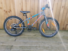 SUPERB CHILDS CUBE MOUNTAIN BIKE