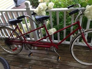 Schwinn Twin bicycle .