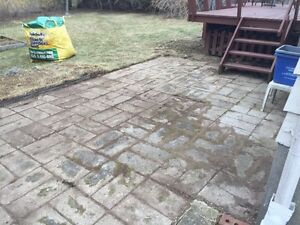 Dylans landscaping professional property maintenance Kingston Kingston Area image 8