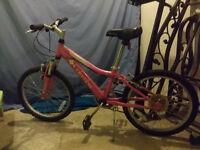 Kids Size Pink 6 Speed Bike