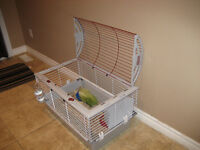 Good Life Rabbit Cage with FOOD