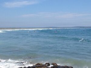 New surf report