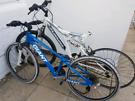 """Pair of Bikes """"GIANT and MUDDYFOX"""""""