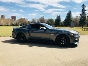 Beautiful 2015 Mustang GT Premium Performance Package