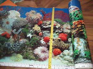 Roll of double sided aquarium backing