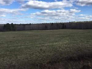Amazing land for sale
