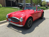 Austin Healey Sebring 5000 Replicar classic sports car