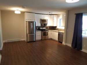 Available for Dec 1st - 1 bedroom above ground suite in new home