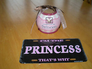 PRINCESS JAR AND METAL SIGN Windsor Region Ontario image 1