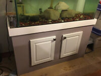 Fish tank, stand and Fluval filter