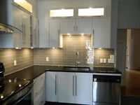 NDG- BEAUTIFUL & SUNNY Completely renovated Lower DUPLEX (5 1/2)