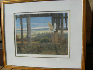 FRAMED LIMITED EDITION PRINT SILENT WINGS