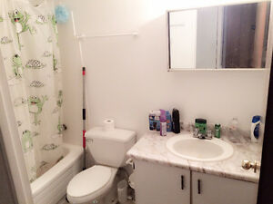 Room available in downtown, 180 Lees Avenue London Ontario image 4