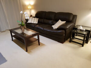$1400 / 1br - 675ft2 -Fully furnished 1 bedroom condo for rent