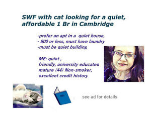 bachelor or 1brm apartment needed for quiet SWF and cat in nov