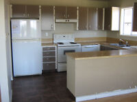 CLEAN 3 LVL+SUITE,N.NAN! W&D,FNCD YARD,NEW WINDOWS+MORE.SEPT1!