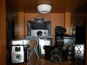 Stayer Ont- Camera Collection Polariods and Kodaks