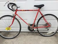 VINTAGE 10 Speed With Plate