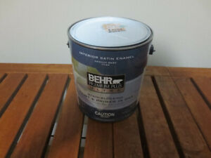 Behr Nile River paint
