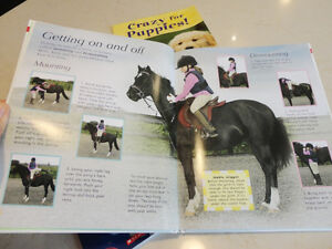 3 Books -Crazy For Puppies , Horse & Pony Book, When Santa Fell Kitchener / Waterloo Kitchener Area image 4