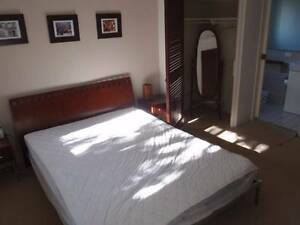 Room for rent in fully furnished St Lucia Apartment St Lucia Brisbane South West Preview