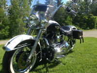 2005  H.D.  Softail Deluxe - Excellent condition