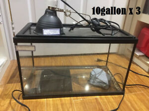 9 reptile tanks w/ accessories  must go as a bundle asap