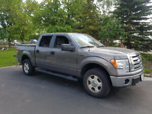 Great Condition 2011 Ford F150 XLT 4x4