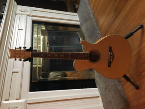 Daisy Rock Acoustic 6 String Guitar- like new!
