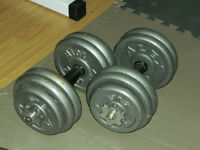 SET: Plates, Dumbbell handles with spin locks,   Plates (Alex)