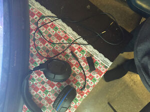Selling turtle beaches