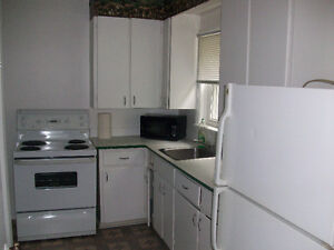 It's Going To Rent Quickly! Trent Student 3Bdrm Apt 1Bdrm Avail. Peterborough Peterborough Area image 9