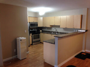 2 Bedroom Condo - inc. Utilities, Satellite & Internet