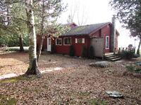 4 Season Lake Front Cottage on Lake Dalrymple