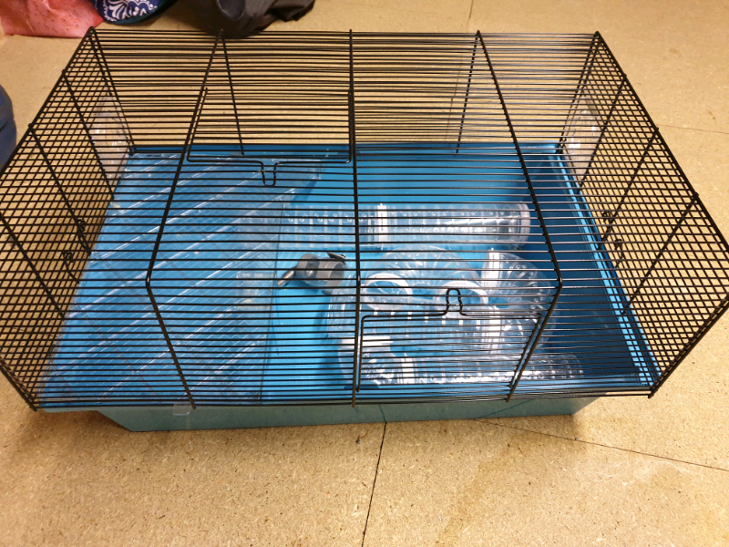 Pets At Home Hamster Cage In Newtongrange Midlothian Gumtree