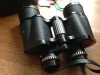 Proloisirs binoculars with black leather case and Queens Jubilee passes