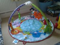 Baby Playmat/ Play Gym - Fisher Price - excellent condition, not often used