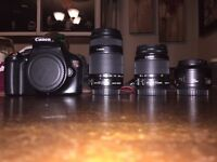 Canon EOS Rebel T3 with lenses. Beginner photography camera