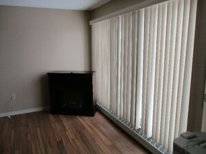 2 BR Apartment in Redcliff