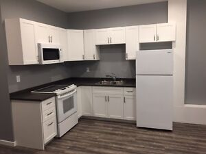 1 Bedroom Basement Suite available May 1st