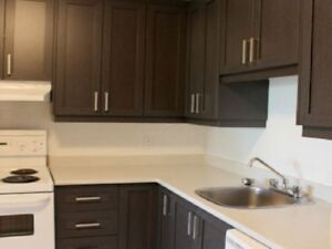 Furnished Apartment for short term rental West-Island Pointe-Cla
