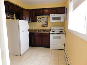 Newly renovated 2 bedroom Adult only apartment - Northside
