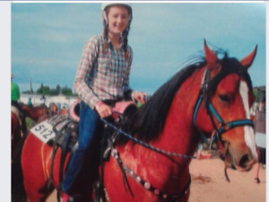10 year old quarter horse with a bit of Arab for sale