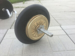 CURLING BAR w 2-25lbs and 4-5lbs STEEL WEIGHT PLATES