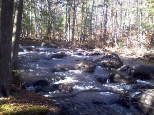 bord de l eau   ( rivière en Cascade )