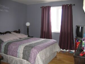2 Apt + In Law Suite, Many Beautiful Features! St. John's Newfoundland image 5