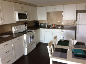 Renovated condo available to buy as investment 14% Return