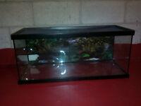 Terrarium Repti Habitat