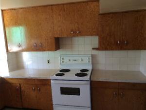 """3 bedroom, 1 bath """"Sunshine"""" basement suite in Calder (northwest"""